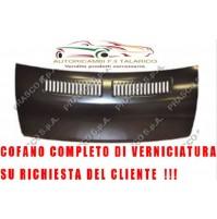 COFANO  FIAT DUCATO ANNO 2006 VERNICIABILE SU RICHIESTA DEL CLIENTE
