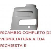 SEMI PARAURTI ANTERIORE SINISTRO DAF XF 105 VERNICIBILE A TUA RICHIESTA